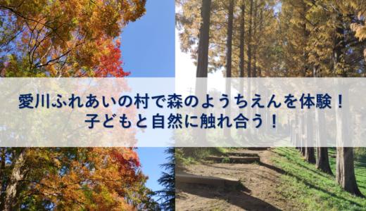 愛川ふれあいの村で森のようちえんを体験!子どもと自然に触れ合う!