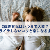 アイキャッチ_2歳差育児