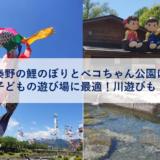 秦野の鯉のぼりとペコちゃん公園は子どもの遊び場に最適!川遊びも!